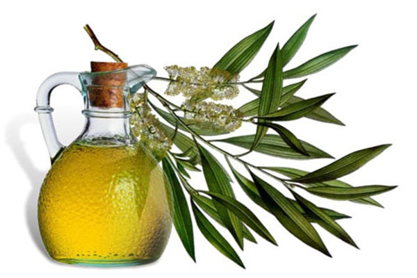 Have you tried home remedies such as Tea tree oil etc unsuccessfully?
